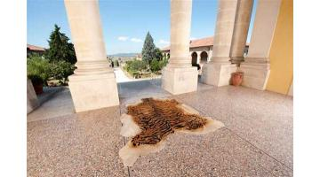 Pelli bovine a pelo per tappeti