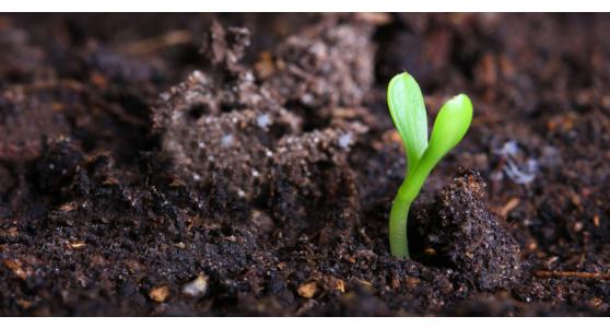 Fieragricola 2018: cresce l'interesse per l'agricoltura