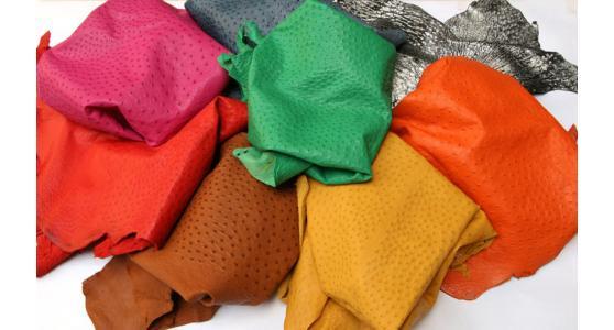 Pelle di struzzo e pellami esotici di alta qualità a Milano ITALHIDE