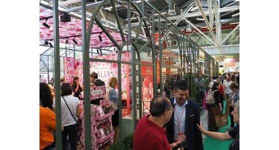 SANA 2019: success for the fair that speaks about nature